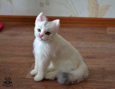 Etsy Комиссия белый кот по MalinaToys