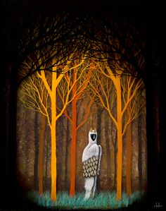 Forest of Illumination ~ Andy Kehoe