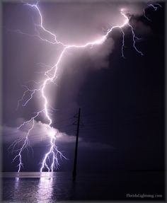 Lightning Florida Keys Islamorada Can't wait for the sound of a good thunderstorm again ! Ride The Lightning, Thunder And Lightning, Lightning Strikes, Lightning Storms, Weather Storm, Weather Cloud, Wild Weather, Tornados, Thunderstorms