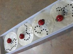 Lady bug shell magnets. Set of 4. on Etsy, $10.00