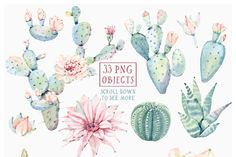 CACTUSES again and again - Illustrations - 2