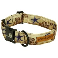 Shellscape, eco-Lucks collar from Dublin Dog.