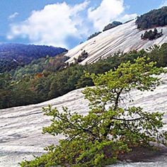 Stone Mountain State Park, located in Wilkes and Alleghany counties of North Carolina, covers 13,747 acres. The centerpiece of the park is Stone Mountain, a dome of exposed granite. It rises sharply over 600 feet above the surrounding terrain. The mountain offers some of the best rock climbing in North Carolina, and the park's creeks and streams feature excellent brook trout fishing. Tent and RV camping, group camping and back country camping are available within the park.