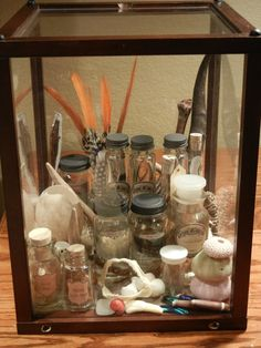 "Cabinet of curiosities no. 7 - 13"" display case filled with natural specimens - by modastrid.deviantart.com on @deviantART"