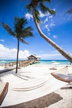 My life in less than a month!! Key West, Florida