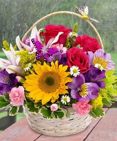 Basket arrangement with sunflower, stargazer lily, roses, mini carnations, alstromeria. Get Well Flowers, Flowers For Mom, Mothers Day Flowers, Summer Flowers, Colorful Flowers, Basket Flower Arrangements, Beautiful Flower Arrangements, Floral Arrangements, Beautiful Flowers