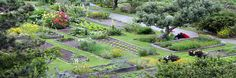 Mendocino Sustainable Green Inn, CA.  Converted all ten acres to sustainable and organic gardening and landscaping in 1985. Offers one of the few vegan, vegetarian organic fine dining experiences in North America