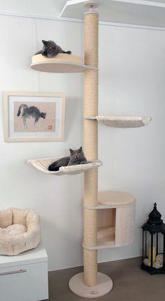 Deckenspanner Modell Luisa von Profeline in der Holzfarbe Weiss mit hängendem Katzenhaus. Deckenhohe Kratzbäume sind sehr elegant und leicht wirkende Katzenbäume, die zwischen Boden und Decke verspannt werden (kein Bohren erforderlich).