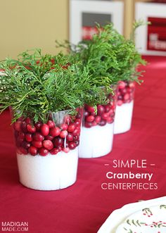 Eye-Catching DIY Christmas Centerpieces , Easy Cranberry Centerpiece Idea