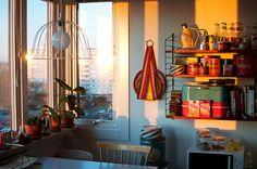 Morning in Hilda Grahnat's kitchen.