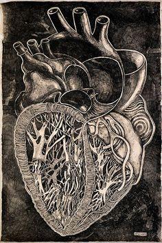 Olesya Drashkaba, anatomical heart drawing.