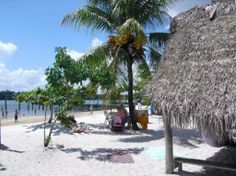 White beach in Suriname