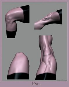 Wrapping up my first study of this new series on anatomy. When sculpting or drawing the knees, focus on the bone landmarks and structure… Foot Anatomy, Gross Anatomy, Anatomy Poses, Anatomy Study, Anatomy Art, Anatomy Drawing, Human Anatomy, Anatomy Sketches, Body Reference
