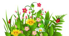 Cute Grass and Flowers PNG Clipart