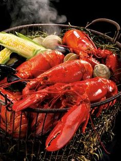 The Maine Course: Lobster and the End of Summer