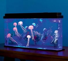 Giant Jellyfish Aquarium with Color-Changing LED Lights. Looks cool, kids will get an aquarium, and I won't have to deal with dead fish. Giant Jellyfish, Jellyfish Tank, Jellyfish Aquarium, Aquarium Kit, Aquarium Fish Tank, Jellyfish Quotes, Jellyfish Facts, Aquarium Ideas, Aquarium Design