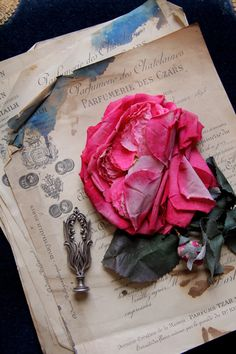 Anne Van tail * Chic & romantic French antiques collection.