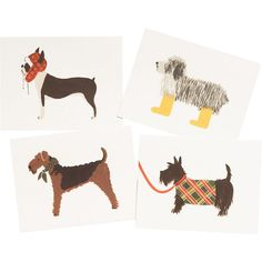 Assorted Dog Note Cards - Paper Source