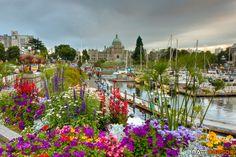 Inner Harbour - Victoria, BC  by Matt Dobson on 500px