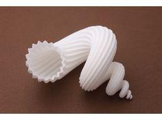 auger stellatus shell