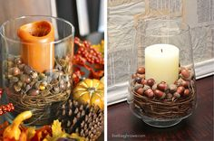 Pottery Barn Inspired Fall Decor. With the right glass container and few other supplies -- you too can make a fabulous centerpiece for less!