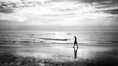 Walking on the beach - Sanibel, United States - Black and white street photography Beach Walk, More Pictures, Php, Street Photography, Web Design, United States, Sunset, Black And White, Gallery