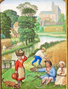 Lavoratori raccolta del grano e di riposo nei campi, dal Golf Book (Libro d'Ore, Utilizzo di Roma), bottega di Simon Bening, Olanda (Bruges), c. 1540, Ulteriori MS 24098,