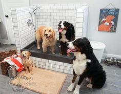 18 best dog shower images on pinterest dog shower laundry room mud room update solutioingenieria Images