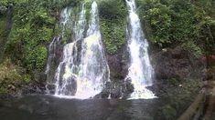 Terletak di dusun Kampung Anyar, desa Taman Suruh, kecamatan Glagah, kabupaten Banyuwangi, air terjun yang satu ini memiliki keunikan tersendiri dibandingkan dengan air tejun pada umumnya., air terjun ini memiliki keunikan tersendiri karena disini terdapat tiga air terjun sekaligus, yang dikenal dengan nama three in one, air terjun kembar, air tejun bersaudara dan air terjun bidadari (karena airnya sangat jernih) oleh masyarakat sekitar. Maui, Waterfall, Around The Worlds, Tours, Places, Nature, Outdoor, Outdoors, Naturaleza