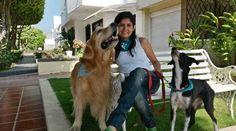 Ximena Mestra, Directora Fundación Protectora de Animales No Humanos.