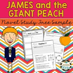 This is a 6 page sample of my novel study for James and the Giant Peach by Roald Dahl. It is Common Core aligned, student-friendly, and easy to use! Includes comprehension and vocabulary for Chapters 1-3, along with an activity focused on plot, and all answer keys!