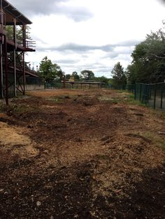 Iron Wolf site cleared