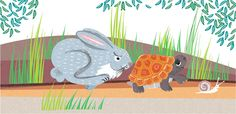 Artisan Biscuits - illustration by Lucia Gaggiotti Scribble, Hare, Tortoise, Turtle, Artisan, Graphic Design, Biscuits, Kids, Happiness