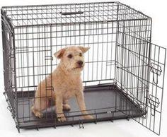 Descubre los beneficios de jaulas para perros para salud de tu pequeño.
