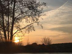 #sunset #tree #vieuws #vieuw #clouds