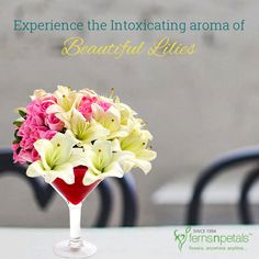 These lovely lilies are bound to get an instant smile on your friend's face. Don't forget to send these flowers to your dear one with a sweet message along with it. http://www.fnp.ae/ #fernsnpetalsUAE #love #lilies #joy