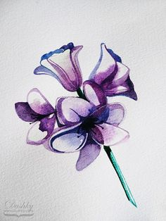 hyacinth illustration by dushky | #illustration #watercolor #flower #purple #hyacinth #bluebell