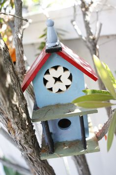 i want to make/paint a bird house!!!