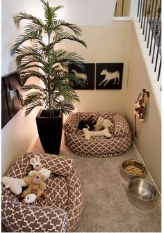 Dog nook! Without the tree