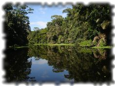 Tortuguero canals, far from everything, serenity and peace awaits you there!