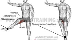 Cable hip adduction exercise
