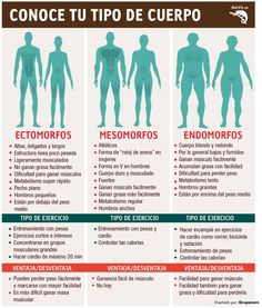 Kinds of body Mens Fitness, Fitness Tips, Fitness Motivation, Health Fitness, Gym Tips, Gym Routine, Excercise, Workout Programs, Gym Workouts