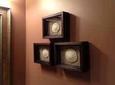 A few of my husband's sand dollar shells displayed in shadow boxes with burlap lining.