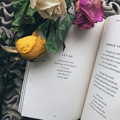 """""""Excerpt from Your Soul Is A River by @nikita_gill and @thoughtcatalog // I loved this book!"""" by (booksteapoetry). poetry #bookstagram #books #booklover #dating #poem #igreads #bookish #quote #reading #author #igpoet #bookstagrammer #book #quotes #poet #writer #wordporn #booknerd #booksandcoffee [Visit www.micefx.com for more...]"""