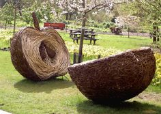 Sliced willow apple Tom Hare Willow Sculpture www.tomhare.net
