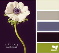 Flora contrast