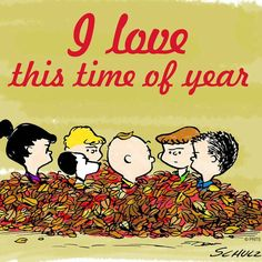 Pin By Joan Ellis On Charlie Brown And Snoopy