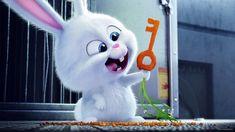 HD wallpaper: Secret Life of Pets Snowball holding carrot key movie scene, movies The Secret World, Secret Life Of Pets, Snowball Rabbit, Cute Images For Dp, Animal Tv, Rabbit Wallpaper, Cute Bunny Cartoon, Kino Film, Cartoon Shows