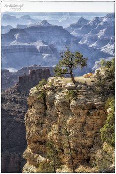 Grand Canyon II by Kai Buddensiek, via 500px