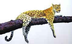 Painting of a Leopard.  Oil on Canvas.  Artist: Charlotte Partridge